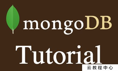 MongoDB Tutorial – installation, example projects, integration with